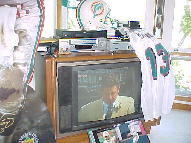 an introduction to the life and sport achievements of dan marino of the miami dolphins Any dan marino biography must also mention his the miami dolphins my life in football many experts credit marino with having shifted the emphasis in nfl.